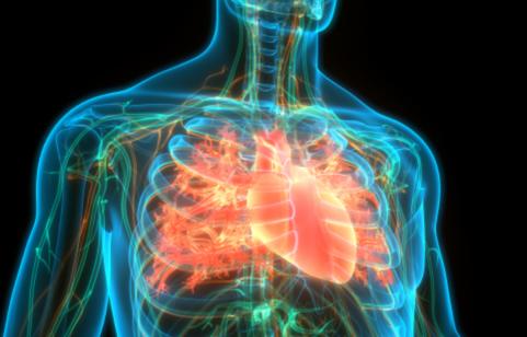 The Landscape of Heart Failure Image